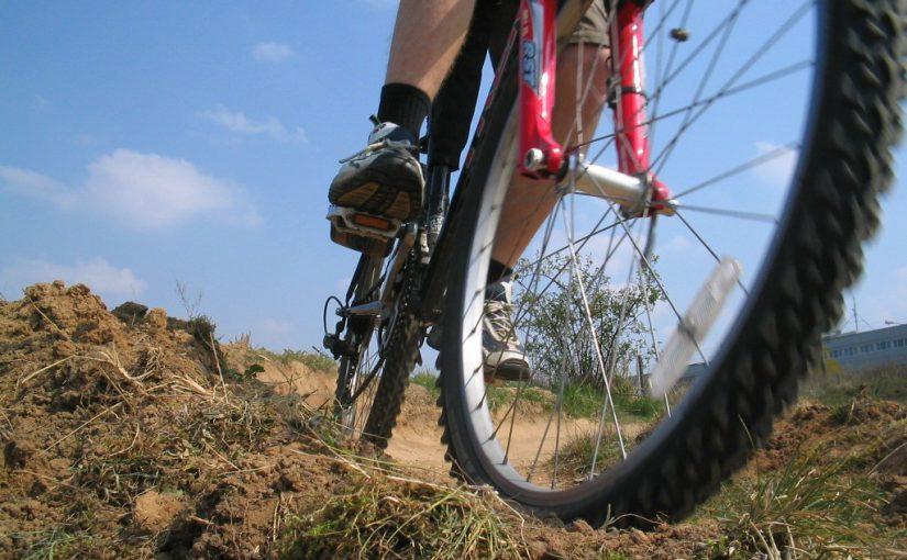 Kupowanie roweru w sklepie stacjonarnym i internetowym – wady, zalety i różnice